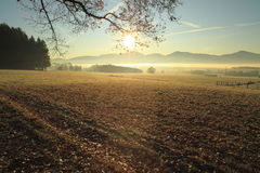 Autumn morning Stock Photography