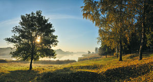Autumn morning Royalty Free Stock Image