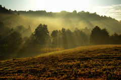 Autumn morning. Hills with trees shrouded in mist Stock Images