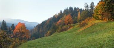 Autumn morning Stock Photography