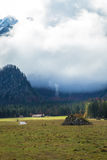 Autumn morning in the alps Royalty Free Stock Images