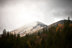 Autumn morning in the Carpathian mountains. Landscape with the end of fall and beginning of winter in mountains Carpathians. Vuhati kamin Royalty Free Stock Image