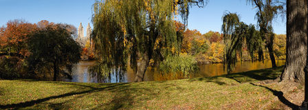 Autumn morning in Central Park, New York - Weeping. Panoramic view of Central Parks fall colors with trees reflecting in the Lake. Weeping willows in New York Stock Photos