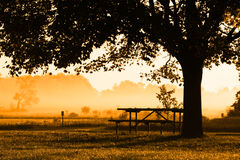 Autumn morning Royalty Free Stock Photography