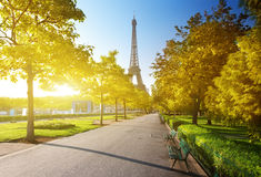 Autumn morning and Eiffel Tower, Paris Royalty Free Stock Image