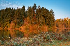 Autumn Morning with Fall Colors and Blue Skies stock image