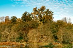 Autumn Morning with Fall Colors and Blue Skies royalty free stock images