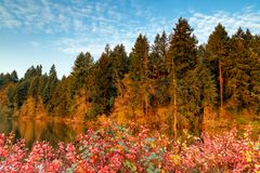 Autumn Morning with Fall Colors and Blue Skies stock images