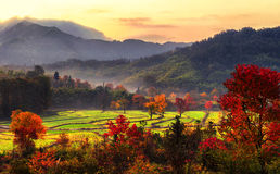 Autumn morning. This is the fall of Huangshan in Anhui, China at the foot of the morning Royalty Free Stock Photos