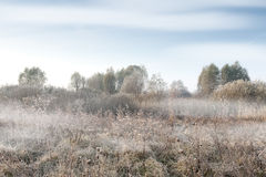 Autumn morning foggy scenery Royalty Free Stock Photography