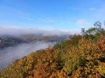 Autumn morning in a forest on the lookout above a river Royalty Free Stock Image