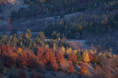 Autumn morning. Hills with trees shrouded in mist Royalty Free Stock Photography