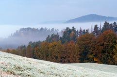 Autumn Morning Hoarfrost Stock Photo