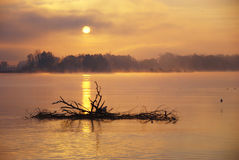 Autumn Morning On The Lake Stock Photography