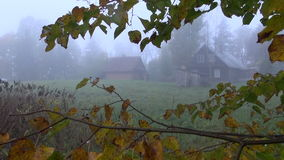 Autumn morning mist in old farm. Early autumn morning mist in old farm stock video