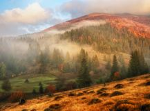 Autumn morning. Misty dawn in the Carpathians Stock Photo