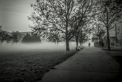 Autumn morning. Misty autumn morning near a park Stock Images