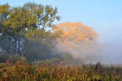 Autumn morning, Moscow suburbs Stock Images