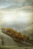 Autumn morning in the mountains Royalty Free Stock Images