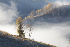 Autumn morning in the mountains Stock Photography