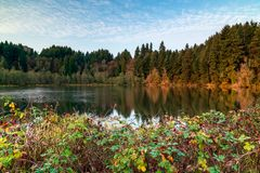 Autumn Morning with Fall Colors and Blue Skies stock photography