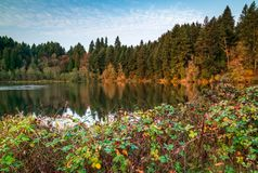 Autumn Morning with Fall Colors and Blue Skies royalty free stock image