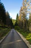 Autumn morning on trekking path at Radocelo mountain Stock Photos
