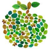 Autumn mosaic apple Stock Photography