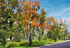 Autumn in Moscow Park Royalty Free Stock Photos