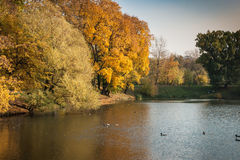 Autumn in  Moscow parks, Russia Royalty Free Stock Photo