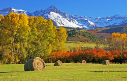 Autumn at Mount Sneffels Royalty Free Stock Images