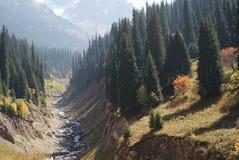 Autumn mountain. Early autumn in the mountain Stock Photography