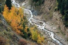 Autumn mountain. Early autumn in the mountain Royalty Free Stock Photos
