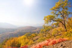 Autumn in mountain Stock Photos
