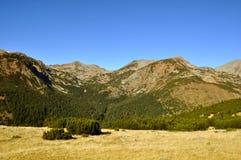 Autumn in mountain Royalty Free Stock Photo