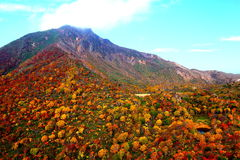 Autumn mountain Royalty Free Stock Photo