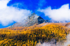 Autumn mountain Stock Photography