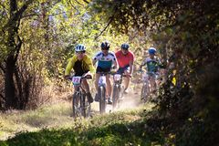 Autumn mountain bile competition Royalty Free Stock Images