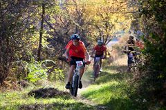Autumn mountain bile competition Stock Image