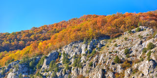 Autumn mountain cascade Stock Images