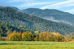 Autumn mountain Royalty Free Stock Images