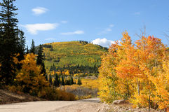 Autumn Mountain Colors Royalty Free Stock Image