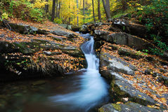 Autumn mountain creek Stock Image