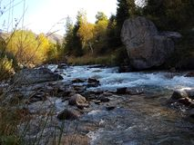 Autumn in the mountain forest. Small Almaty gorge, Kazakhstan Royalty Free Stock Photography