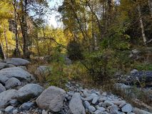 Autumn in the mountain forest. Small Almaty gorge, Kazakhstan Royalty Free Stock Images