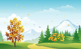 Autumn mountain forest. Illustration of a fall scenery Stock Image