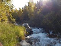 Autumn in the mountain forest. Small Almaty gorge, Kazakhstan Royalty Free Stock Photos