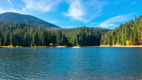 Autumn Mountain Lake with Colorful Trees in the Forest. And Fallen Leaves on the Water. Timelapse stock footage