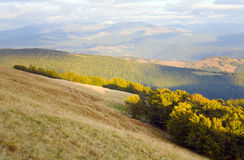Autumn mountain landscape Stock Photography