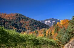 Autumn mountain landscape. Fresh landscape of mountain and forest Stock Photos